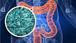 Microbioma e Microbiota intestinale